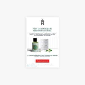 Exemple action ecommerce de stimulation des ventes avec un mail de relance de paniers abandonnés.